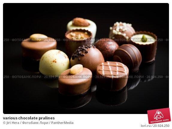 Купить «various chocolate pralines», фото № 20924250, снято 20 апреля 2019 г. (c) PantherMedia / Фотобанк Лори