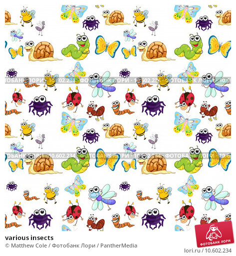 various insects. Стоковая иллюстрация, иллюстратор Matthew Cole / PantherMedia / Фотобанк Лори