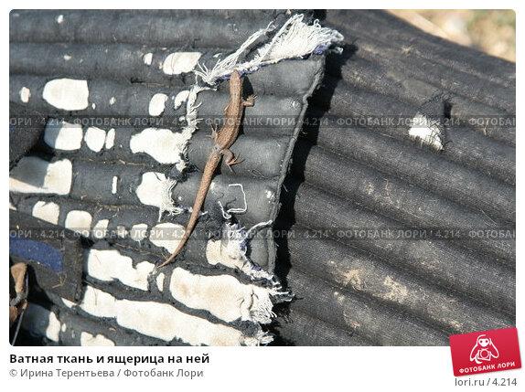 Ватная ткань и ящерица на ней, эксклюзивное фото № 4214, снято 1 мая 2006 г. (c) Ирина Терентьева / Фотобанк Лори
