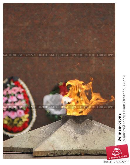 Купить «Вечный огонь», фото № 309590, снято 3 июня 2008 г. (c) Алексей Калашников / Фотобанк Лори