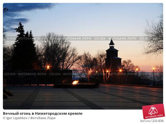 Вечный огонь в Нижегородском кремле, фото № 233834, снято 21 марта 2008 г. (c) Igor Lijashkov / Фотобанк Лори