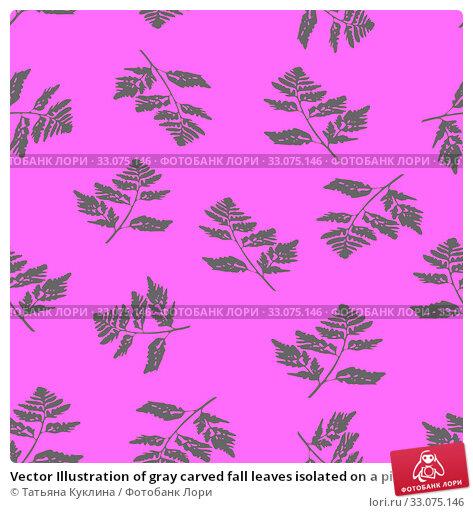 Купить «Vector Illustration of gray carved fall leaves isolated on a pink background, Seamless pattern», иллюстрация № 33075146 (c) Татьяна Куклина / Фотобанк Лори