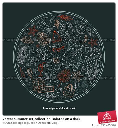 Vector summer set,collection isolated on a dark. Стоковая иллюстрация, иллюстратор Альдана Прокофьева / Фотобанк Лори