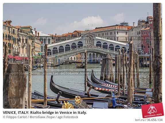 VENICE, ITALY: Rialto bridge in Venice in Italy. Стоковое фото, фотограф Filippo Carlot / age Fotostock / Фотобанк Лори