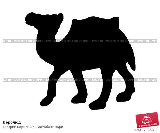 Купить «Верблюд», фото № 128310, снято 30 апреля 2007 г. (c) Юрий Борисенко / Фотобанк Лори