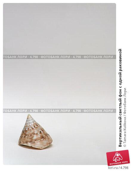 Купить «Вертикальный светлый фон с одной раковиной », фото № 4798, снято 17 июня 2006 г. (c) Tamara Kulikova / Фотобанк Лори