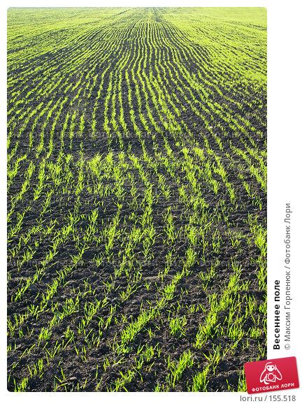 Весеннее поле, фото № 155518, снято 15 апреля 2007 г. (c) Максим Горпенюк / Фотобанк Лори