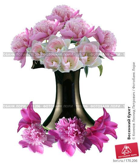 Весенний букет, фото № 170206, снято 26 мая 2017 г. (c) Коннов Леонид Петрович / Фотобанк Лори