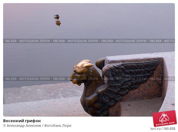 Весенний грифон, эксклюзивное фото № 180858, снято 26 декабря 2006 г. (c) Александр Алексеев / Фотобанк Лори