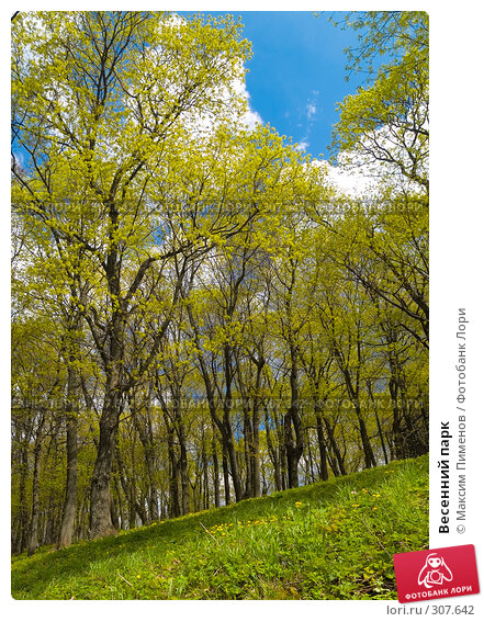 Весенний парк, фото № 307642, снято 11 мая 2007 г. (c) Максим Пименов / Фотобанк Лори
