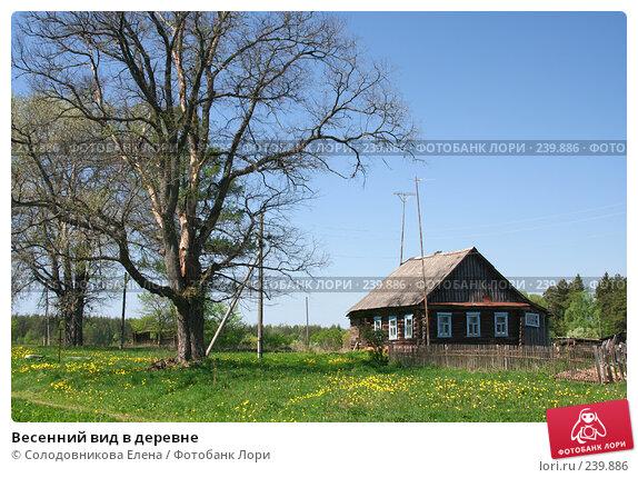 Весенний вид в деревне, эксклюзивное фото № 239886, снято 20 мая 2007 г. (c) Солодовникова Елена / Фотобанк Лори