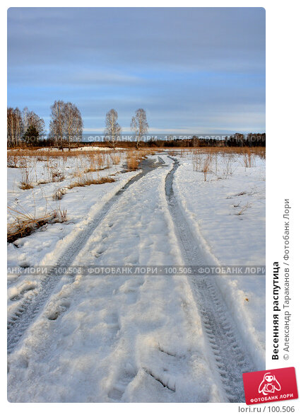 Весенняя распутица, фото № 100506, снято 25 марта 2017 г. (c) Александр Тараканов / Фотобанк Лори