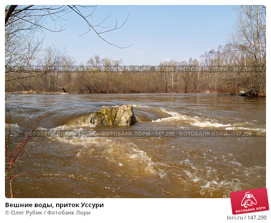 Вешние воды, приток Уссури, фото № 147290, снято 29 апреля 2007 г. (c) Олег Рубик / Фотобанк Лори