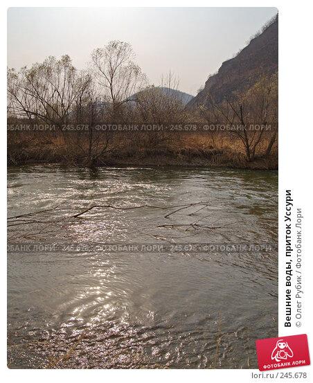 Вешние воды, приток Уссури, фото № 245678, снято 7 апреля 2008 г. (c) Олег Рубик / Фотобанк Лори