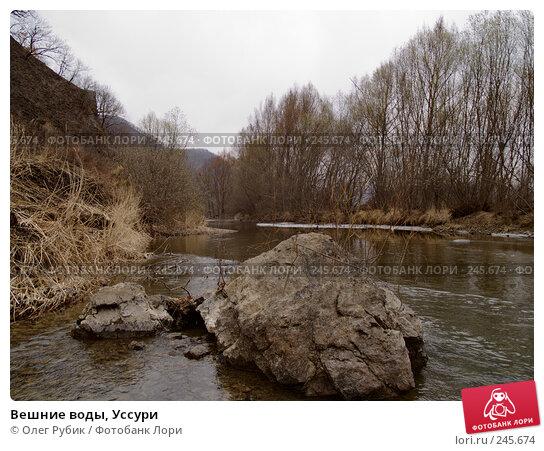 Вешние воды, Уссури, фото № 245674, снято 6 апреля 2008 г. (c) Олег Рубик / Фотобанк Лори