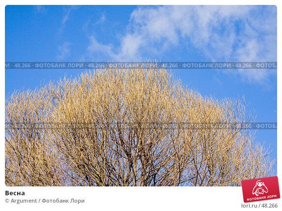Весна, фото № 48266, снято 7 апреля 2007 г. (c) Argument / Фотобанк Лори