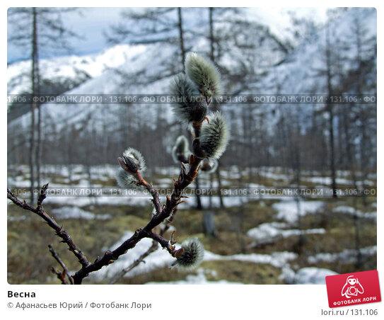 Весна, фото № 131106, снято 20 февраля 2017 г. (c) Афанасьев Юрий / Фотобанк Лори