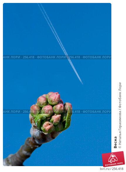 Купить «Весна», фото № 256418, снято 18 апреля 2008 г. (c) Наталья Герасимова / Фотобанк Лори