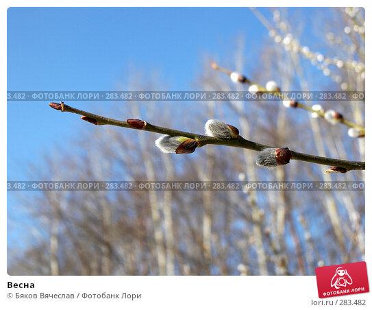 Весна, фото № 283482, снято 5 апреля 2008 г. (c) Бяков Вячеслав / Фотобанк Лори
