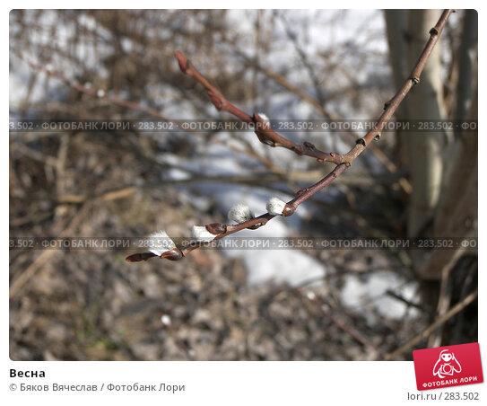 Весна, фото № 283502, снято 5 апреля 2008 г. (c) Бяков Вячеслав / Фотобанк Лори
