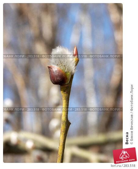 Купить «Весна», фото № 283518, снято 5 апреля 2008 г. (c) Бяков Вячеслав / Фотобанк Лори