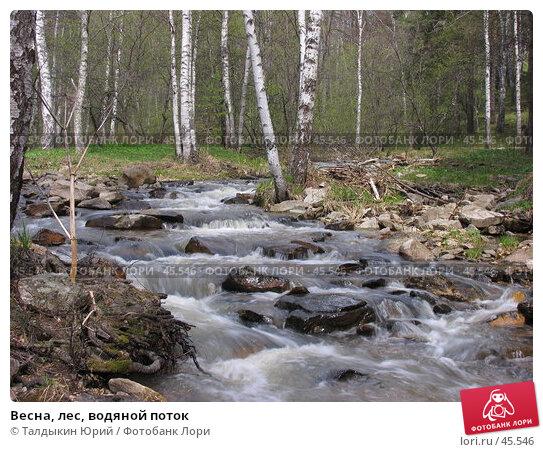 Весна, лес, водяной поток, фото № 45546, снято 20 мая 2007 г. (c) Талдыкин Юрий / Фотобанк Лори