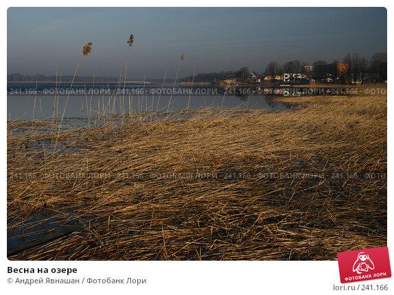 Весна на озере, фото № 241166, снято 27 марта 2007 г. (c) Андрей Явнашан / Фотобанк Лори