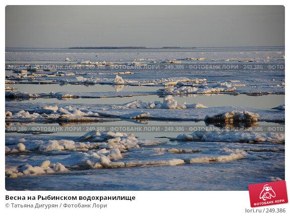 Весна на Рыбинском водохранилище, фото № 249386, снято 12 апреля 2008 г. (c) Татьяна Дигурян / Фотобанк Лори