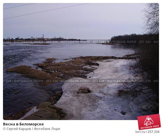 Весна в Беломорске, фото № 257334, снято 6 мая 2006 г. (c) Сергей Карцов / Фотобанк Лори