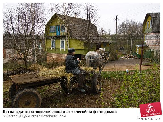 Весна в дачном поселке: лошадь с телегой на фоне домов, фото № 265674, снято 13 апреля 2008 г. (c) Светлана Кучинская / Фотобанк Лори