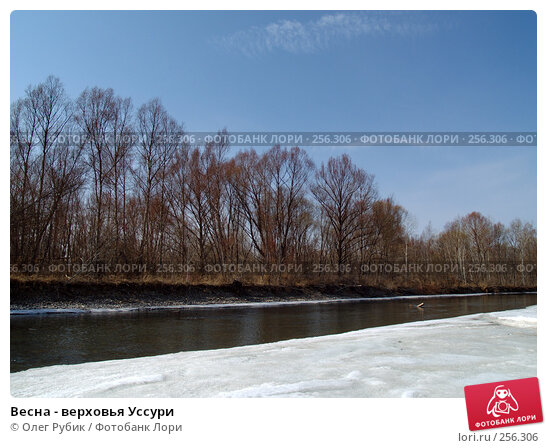 Весна - верховья Уссури, фото № 256306, снято 21 марта 2008 г. (c) Олег Рубик / Фотобанк Лори
