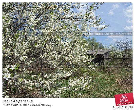 Купить «Весной в деревне», фото № 272298, снято 1 мая 2008 г. (c) Яков Филимонов / Фотобанк Лори