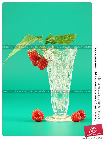 Ветка с ягодами малины в хрустальной вазе, фото № 135950, снято 26 июля 2007 г. (c) Елена Блохина / Фотобанк Лори