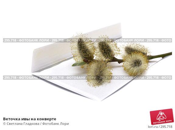 Купить «Веточка ивы на конверте», фото № 295718, снято 9 апреля 2008 г. (c) Cветлана Гладкова / Фотобанк Лори