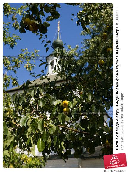 Ветви с плодами груши-дички на фона купола церкви Петра и Павла в Старочеркасске, фото № 98662, снято 25 августа 2007 г. (c) Борис Панасюк / Фотобанк Лори