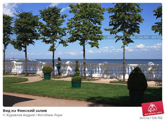 Вид на Финский залив, эксклюзивное фото № 124702, снято 23 июля 2007 г. (c) Журавлев Андрей / Фотобанк Лори