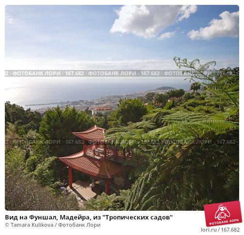 """Вид на Фуншал, Мадейра, из """"Тропических садов"""", фото № 167682, снято 29 декабря 2007 г. (c) Tamara Kulikova / Фотобанк Лори"""