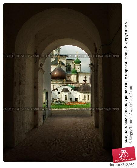 Вид на Храм сквозь крепостные ворота. Новый Иерусалим., фото № 312950, снято 13 февраля 2005 г. (c) Sergey Toronto / Фотобанк Лори