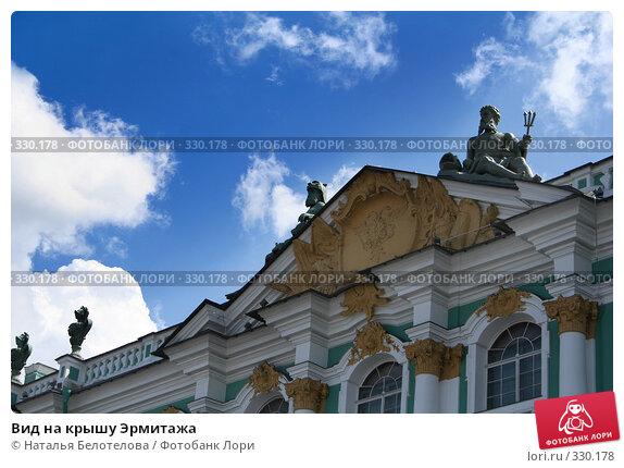 Вид на крышу Эрмитажа, фото № 330178, снято 21 июня 2008 г. (c) Наталья Белотелова / Фотобанк Лори