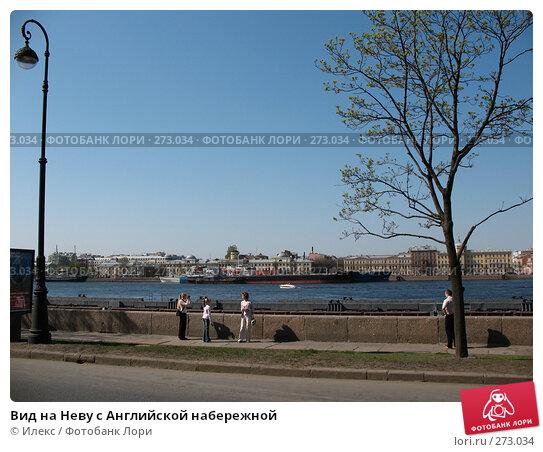 Вид на Неву с Английской набережной, фото № 273034, снято 2 мая 2008 г. (c) Морковкин Терентий / Фотобанк Лори