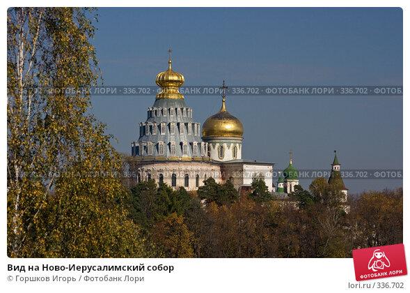 Вид на Ново-Иерусалимский собор, эксклюзивное фото № 336702, снято 30 сентября 2007 г. (c) Горшков Игорь / Фотобанк Лори