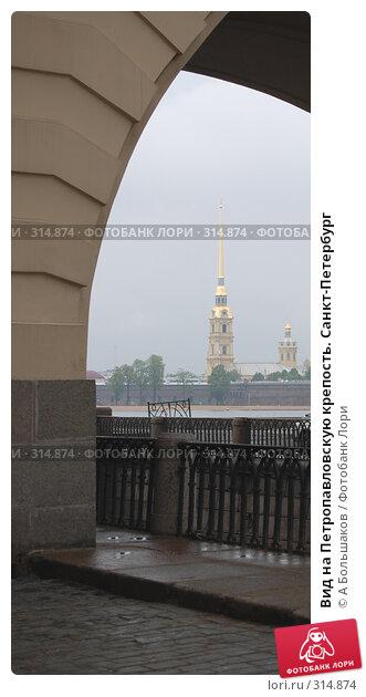 Вид на Петропавловскую крепость. Санкт-Петербург, фото № 314874, снято 21 января 2017 г. (c) A Большаков / Фотобанк Лори