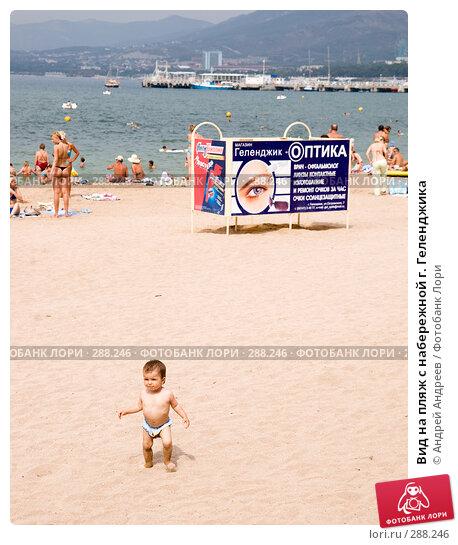 Купить «Вид на пляж с набережной г. Геленджика», фото № 288246, снято 4 сентября 2007 г. (c) Андрей Андреев / Фотобанк Лори