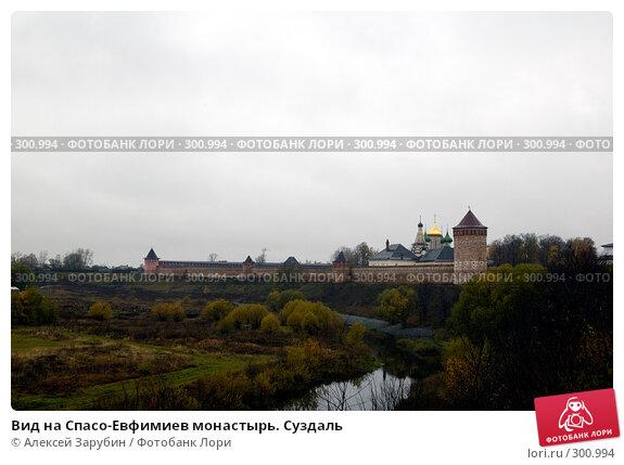 Вид на Спасо-Евфимиев монастырь. Суздаль, фото № 300994, снято 13 октября 2007 г. (c) Алексей Зарубин / Фотобанк Лори