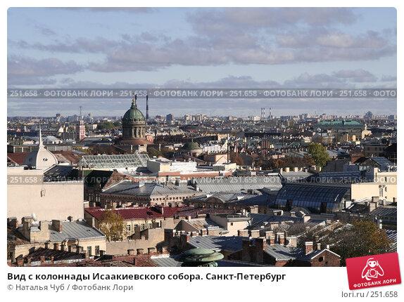 Вид с колоннады Исаакиевского собора. Санкт-Петербург, фото № 251658, снято 21 октября 2007 г. (c) Наталья Чуб / Фотобанк Лори