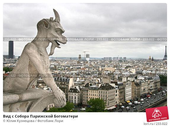 Вид с Собора Парижской Богоматери, фото № 233022, снято 7 мая 2007 г. (c) Юлия Кузнецова / Фотобанк Лори