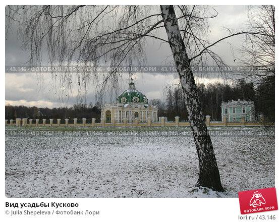 Купить «Вид усадьбы Кусково», фото № 43146, снято 5 ноября 2006 г. (c) Julia Shepeleva / Фотобанк Лори