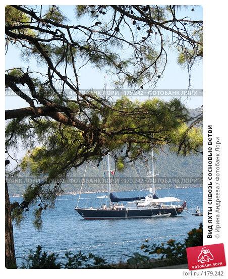 Вид яхты сквозь сосновые ветви, фото № 179242, снято 3 августа 2006 г. (c) Ирина Андреева / Фотобанк Лори