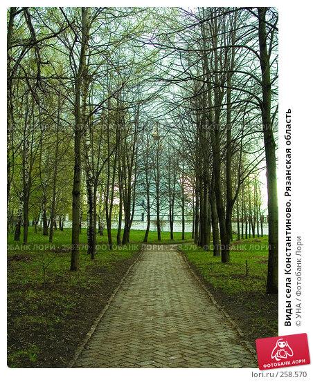 Виды села Константиново. Рязанская область, фото № 258570, снято 18 апреля 2008 г. (c) УНА / Фотобанк Лори