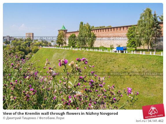 View of the Kremlin wall through flowers in Nizhny Novgorod (2019 год). Редакционное фото, фотограф Дмитрий Тищенко / Фотобанк Лори